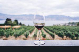 verre-vin-rouge-domaine-viticole