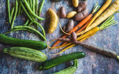 Ne gâcher plus votre nourriture congeler vos fruits et légumes!